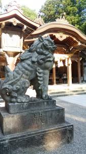 白山神社狛犬さん
